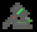 Dados de Leilão